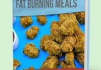 Family Friendly Fat Burning Meals free pdf download