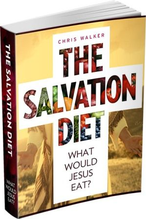 The Salvation Diet free pdf download