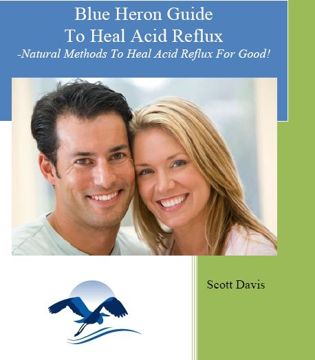 The Acid Reflux Strategy pdf download